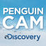 Penguin Cam Live Chat April 25, 2012