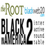 Black in America 2 in Review