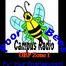 PoorBees Web Radio