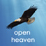 Open Heaven Church Service Sun22.12.13