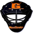 Gettysburg College Hockey