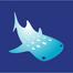 아쿠아플라넷 제주 돌고래수조(aqua planet dolphin live)