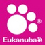 Toy Group at AKC/Eukanuba National Championship 