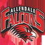 Allendale Falcons Wrestling