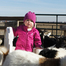 Baby Fainting Goats! Barnyard Buddies