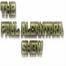 The Paul Alcantara Show