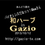 GAZIO_EVENT