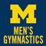 Michigan Men's Gymnastics