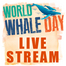 World Whale Day 2014 by PWF