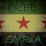March 15th Syrian Revolution 3 Year Anniversary