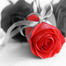 Lee and Auldra's Wedding LIVE at 16:00 on the 22nd recorded live on 22/04/2014 at 04:09 pm BST