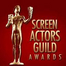 Screen Actors Guild Awards 2015 Live Stream