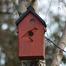 Shenley Bird Box.