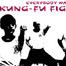 Wing Chun Kung Fu Fighting