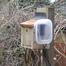 Bushloe Bird Box