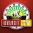 «Оплот ТВ»: прямая трансляция