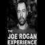 Joe Rogan Podcast #1 - Brian Redban