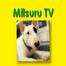 MitsuruTV