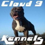 Cloud9Kennels March 1, 2012 8:25 AM