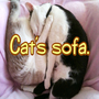 Cat's sofa Channels