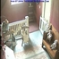 Haunted Doll House Cam