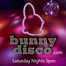 Bunny Disco Party - Hit the Lights!
