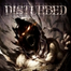 Disturbed Live