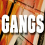 GANGS: Strategies to Break the Cycle of Violence