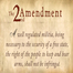 Second Amendment in Focus