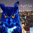 TLV Night Owls LIVE!