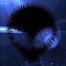Kosmology *Live from Submerge*