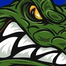 GCTV: Florida Gators video chat, 12/15/11