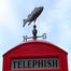 telephish