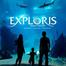 Exploris Seal Cam