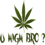 You High Bro?