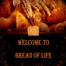 Bread of Life Church, Bloomington, MN