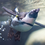 African Penguins, Underwater Cam