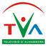 TELEVISIO ALMASSORA