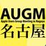 AUGM 名古屋 2012