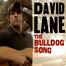David Lane Live