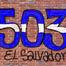 GUANACOS503RADIO