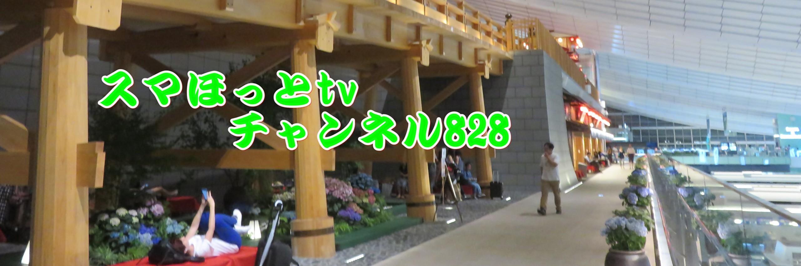 いんざらいふTV