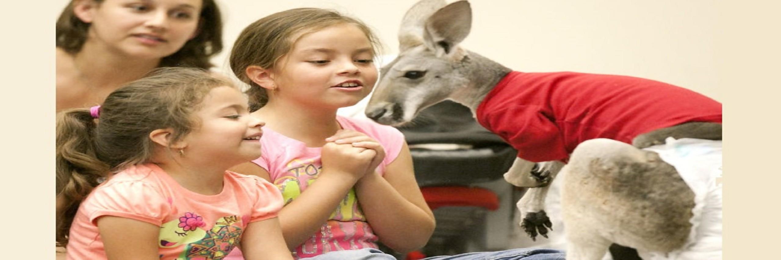 Houston Petting Zoo
