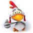 Chicken Whisperer Coop Cam