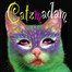 The Catzmadam recorded live on 7/07/12 at 10:34 PM GMT+02:00