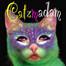 The Catzmadam recorded live on 7/07/12 at 9:35 PM GMT+02:00