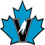 Vees Broadcast
