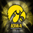 IowaMensGymnastics