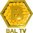 Bal TV Canlı İzle