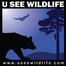 Dogwood Mountain Live Cam - USeeWildlife